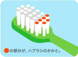 前歯の内側の磨き方図解2